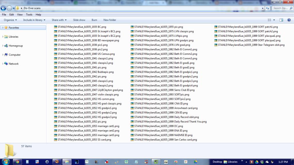 Genealogy files